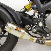 11-14 Ducati Monster 1100...