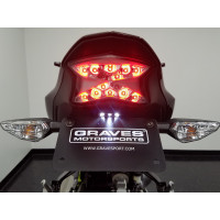 17-20 Kawasaki Z900 Graves...