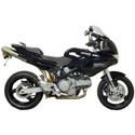 Bestem Carbon Fiber Ducati 620/1000/1100